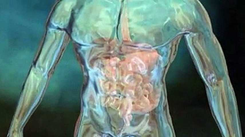 Abdomen Aigu Chirurgical Download