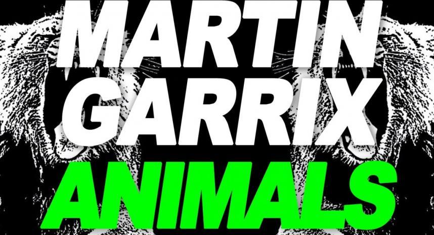 Martin Garrix Animals